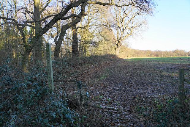 Footpath off Wood End Lane