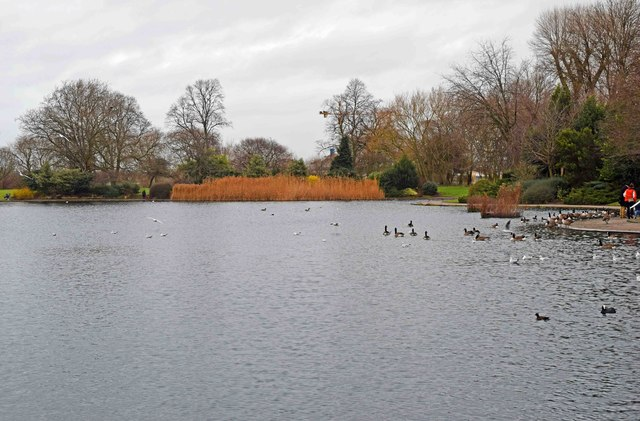The lake at Alvaston Park, Derby