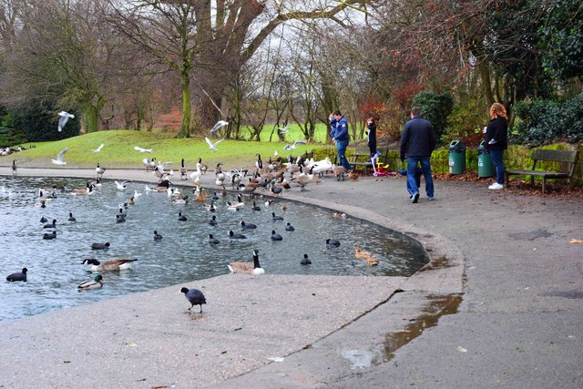 Feeding the ducks etc. at the lake, Alvaston Park, Derby