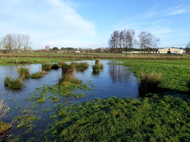 Icy floods, Mullaghmenagh Upper