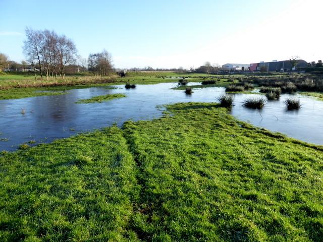 Flooded ground, Mullaghmenagh Upper