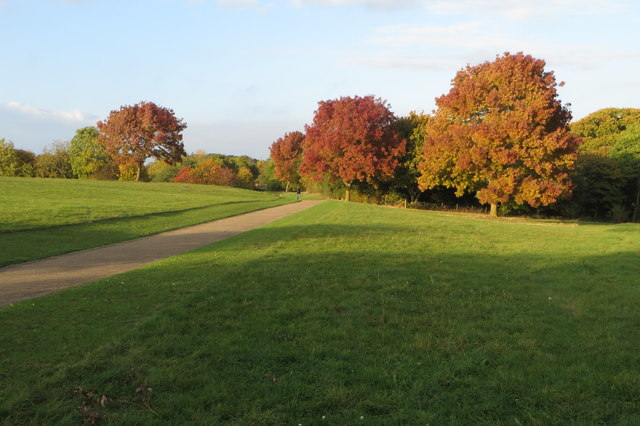 Campbell Park in autumn