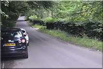 TQ3329 : Balcombe Lane by N Chadwick