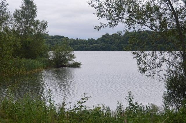 Bay, Ardingly Reservoir