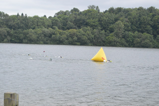 Openwater swimmers, Ardingly Reservoir