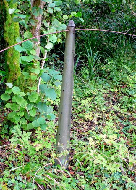Railway Fencing on Bridport Branch Line (1)