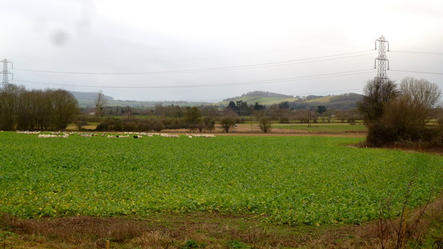 View across the Lugg floodplain