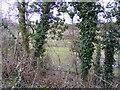 SO8695 : Hidden Pylon by Gordon Griffiths