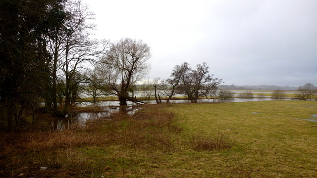 Lugg meadows, 1