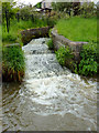 SJ9051 : Canal lock overflow channel near Norton-in-The-Moors by Roger  Kidd