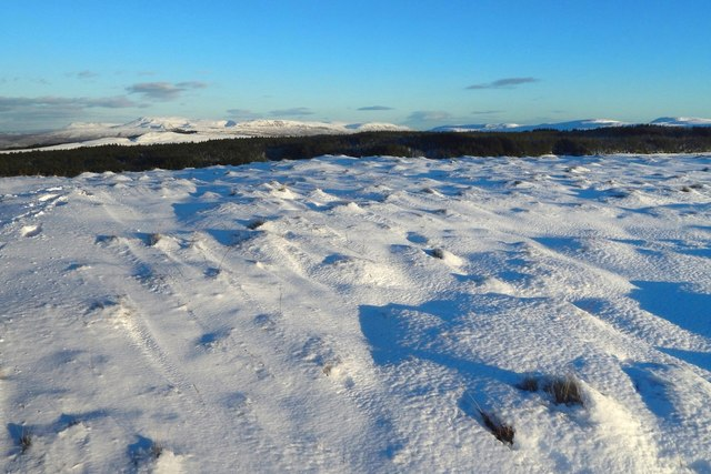 The summit of Meikle White Hill