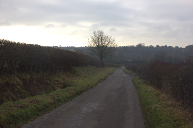 Bolton's Lane, looking south