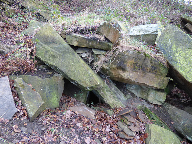 Possible old adit entrance in Post Hill woods - detail