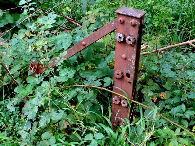 Railway Fencing on Bridport Branch Line (6)