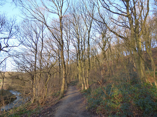 Lower path in Post Hill woods