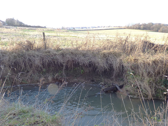 Erosion on Pudsey Beck at Troydale