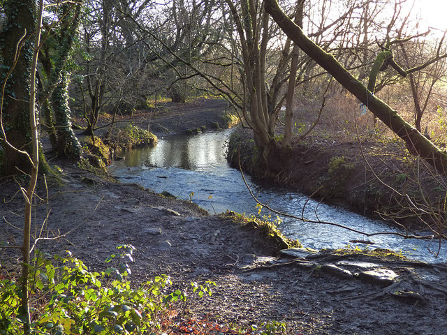 Pudsey Beck in Post Hill woods
