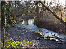 SE2332 : Pudsey Beck in Post Hill woods by Stephen Craven