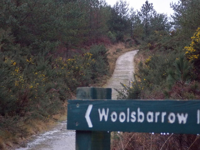 Wareham: the track to Woolsbarrow Fort