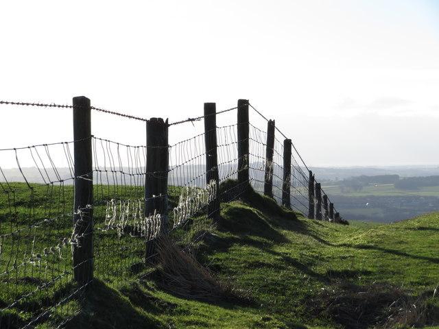 Fence on Mynydd Meiros