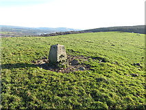 ST0184 : Summit marker on Mynydd Meiros by Gareth James