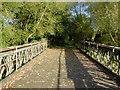 SK1615 : Mill stream bridge at Alrewas, Staffordshire by Roger  Kidd