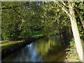 SK1615 : Mill stream in Alrewas, Staffordshire by Roger  Kidd