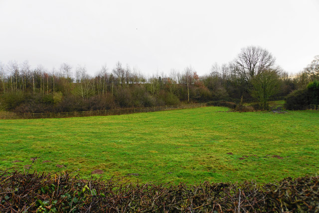 Field by Weeford Road
