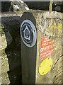 ST6063 : Chewed near the Chew by Neil Owen
