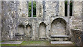 V9787 : Double piscina, sedilia and tomb recess - chancel at Muckross Abbey church by Phil Champion