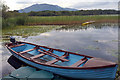 V9686 : Boat on Lough Leane, Muckross, Killarney National Park by Phil Champion