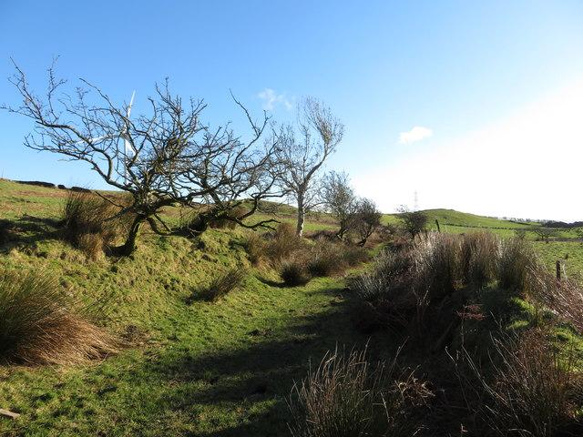On the Taff Ely Ridgeway walk - view east