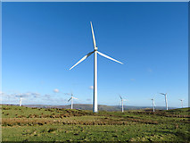 SS9885 : The Taff Ely windfarm by Gareth James