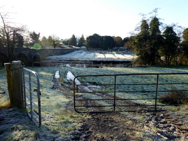 A frosty field, Lissan