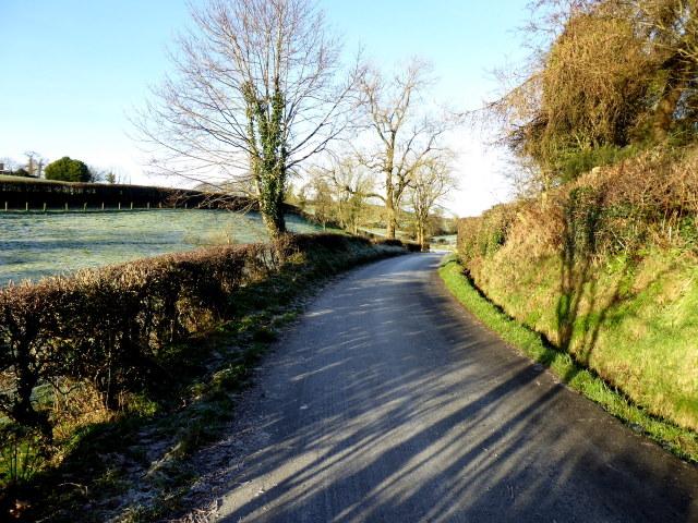 Shanley Road