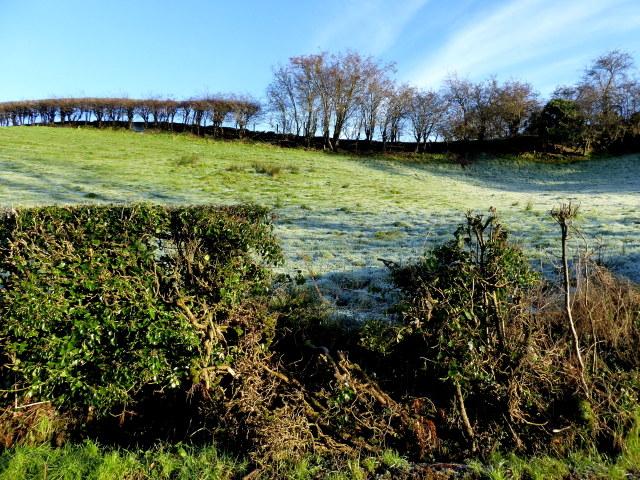 A frosty hill, Lissan