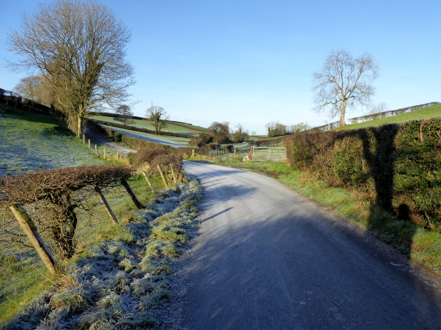 Winter shadows, Lissan