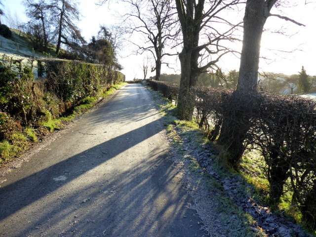 Shadows, Shanley Road