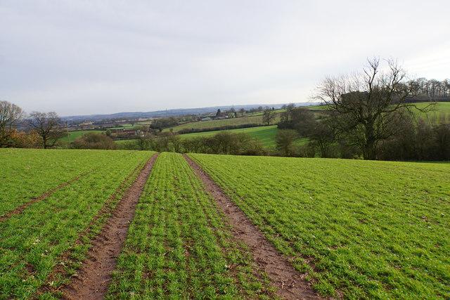 Path towards Hints Farm