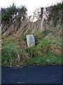 SN6077 : Aberystwyth Fundamental by Richard Law