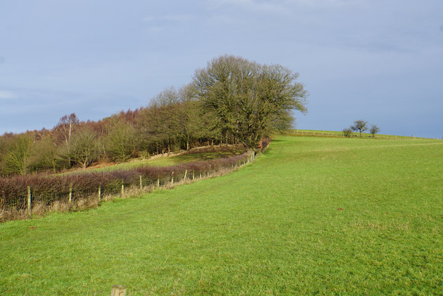 Path up to Gorsey Hill