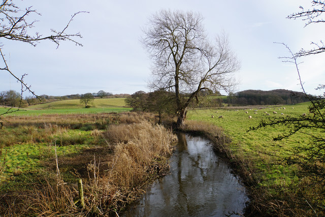 Black Brook