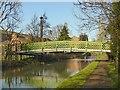 SK4833 : Footbridge over the Erewash Canal by Alan Murray-Rust