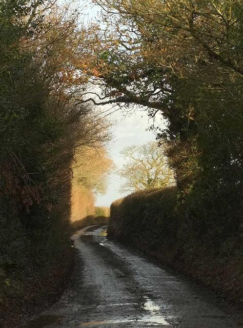 Lane from Holcombe Barton Corner