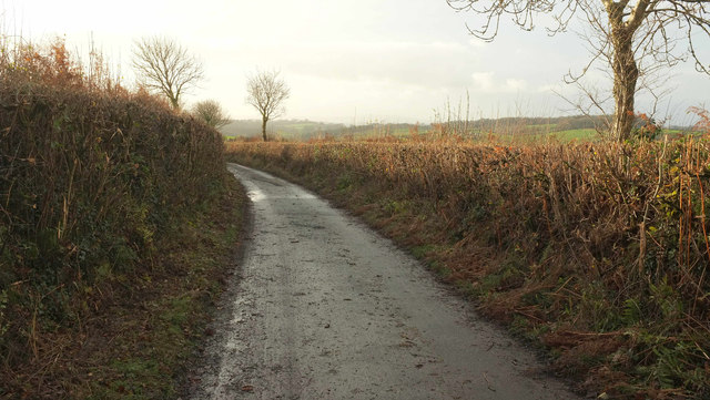 Lane near Oxenpark Plantation