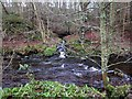 NY9650 : River Derwent near Blanchland by Andrew Curtis