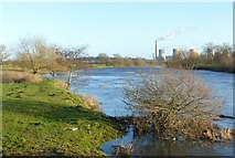 SK4731 : River Trent at Harrington Bridge by Alan Murray-Rust