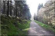 ST1736 : Road in Quantock Combe by Richard Webb