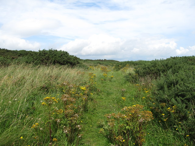 View East along the main path in the Ballyquintin Nature Reserve