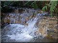 ST6463 : Glistening cascade by Neil Owen